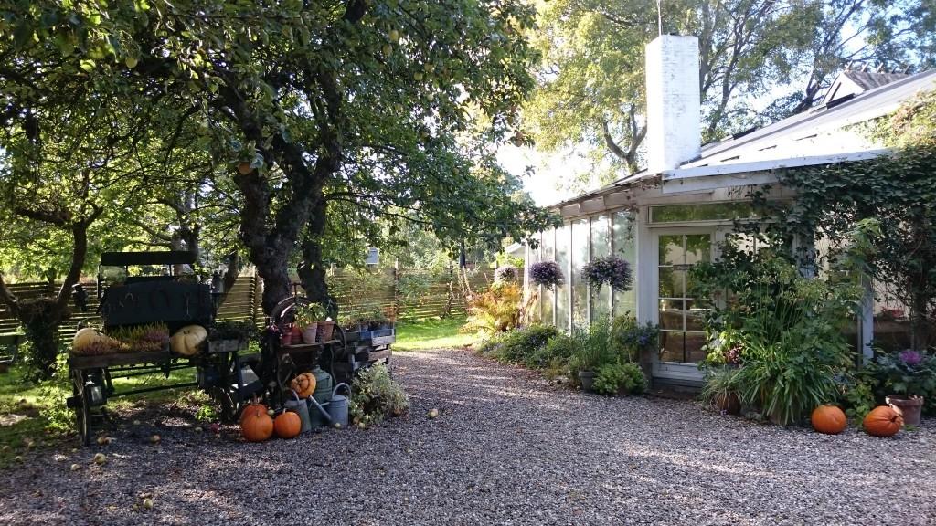 Smedens have Udsholt Wintergarten