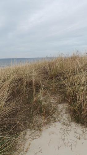 Dänemark wo das Glück wohnt Blog Glücklich am Strand von oben
